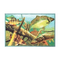Covor Delphin AQUA