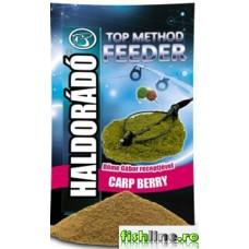 Haldorado Top Method Feeder  Carp Berry